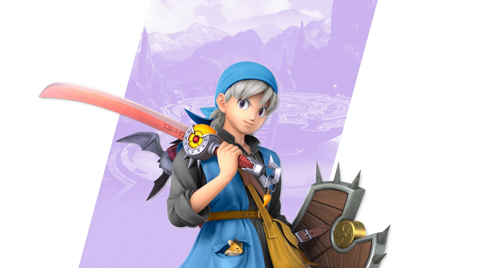 Super Smash Bros Ultimate Hero Costume